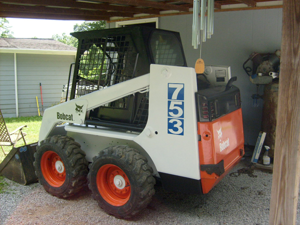 how to paint a Bobcat